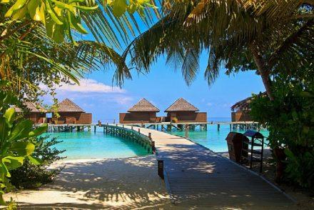 Faire de la plongée aux Maldives